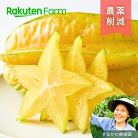 朝採り スターフルーツ750g(3~7個) こだわり農家直送 沖縄県宮古島 すなかわ果樹園