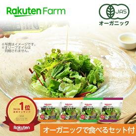 オーガニックで楽しむセット付 100% オーガニック野菜 3種のサラダ 80g×4個 国産