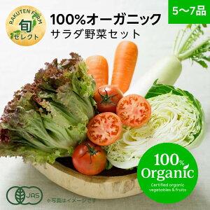 【割引クーポンあり】全国旬セレクト サラダ野菜セット