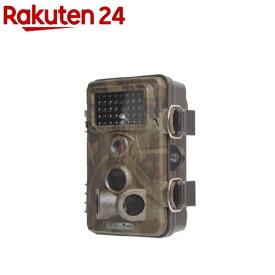 サンコー 自動録画防犯カメラ RD1006AT AUTMTSEC(1セット)