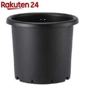 菊鉢 9号 ブラック(1コ入)