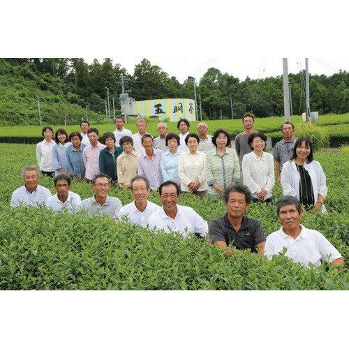 赤堀商店本格濃厚一番摘み掛川茶