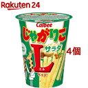 じゃがりこ サラダ Lサイズ(72g*4個セット)【じゃがりこ】