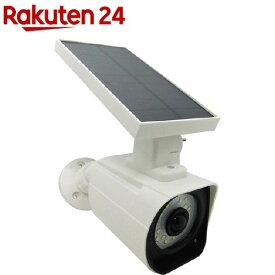 ソーラー式カメラ型LED警告灯 SOL-CAM-LED(1台)