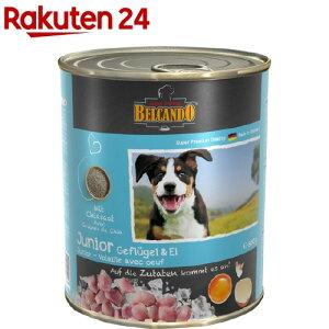 ベルカンド ジュニア 家禽肉と卵 缶詰(800g*6個入)