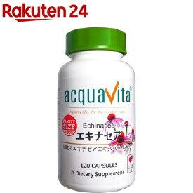 アクアヴィータ エキナセア ファミリーサイズ(120粒)【アクアヴィータ(acquavita)】