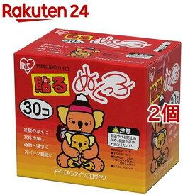 カイロ/ぬくっ子 貼るカイロ(30個入*2個セット)【coldprotect-2】【ぬくっ子】
