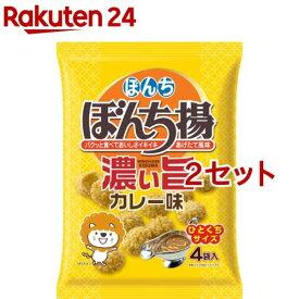 ぼんち ぼんち揚 濃い旨カレー味(72g(4袋)*2セット)