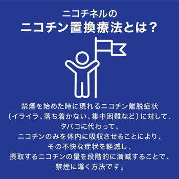 ニコチネルパッチ20禁煙補助薬(セルフメディケーション税制対象)
