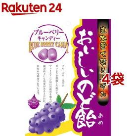 おいしいのど飴 ブルーベリー(70g*4袋セット)