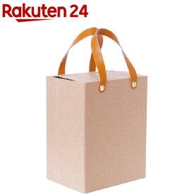 ナカバヤシ ライフスタイルツール 収納カバン クラフト LST-SK01-KR(1コ入)【ナカバヤシ】