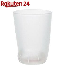 coconeko 子猫ムジ(1コ)