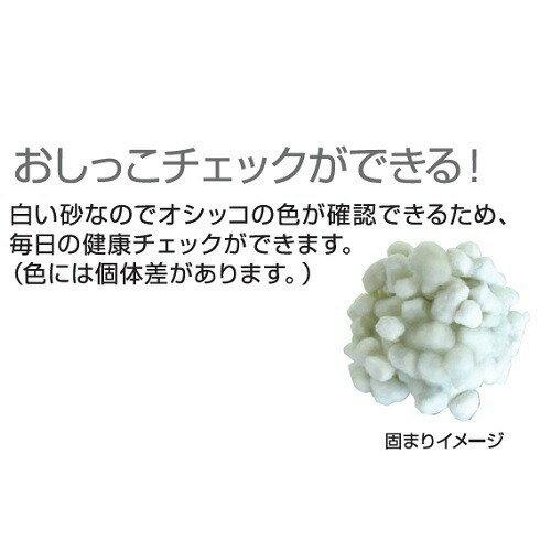 ネオ砂ホワイト