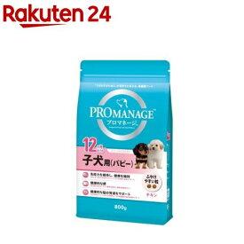 プロマネージ 12ヶ月までの子犬用(パピー)(800g)【プロマネージ】