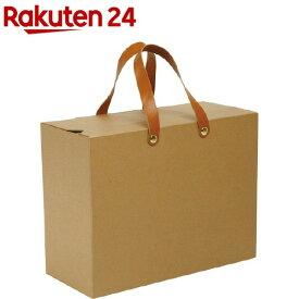 ナカバヤシ ライフスタイルツール 収納カバン LST-SK02-KR(1コ入)【ナカバヤシ】