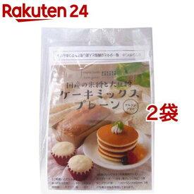 げんきタウン 国産の米粉と大豆粉 ケーキミックス プレーン(110g*2袋セット)【げんきタウン】
