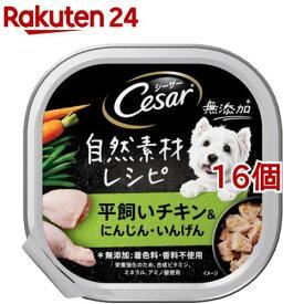シーザー 自然素材レシピ 平飼いチキン&にんじん・いんげん(85g*16個セット)【シーザー(ドッグフード)(Cesar)】