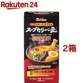 スープカリーの匠 ペーストタイプ 濃厚辛口(119g*2箱セット)