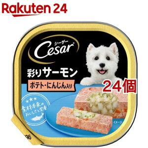 シーザー サーモン風味 ポテトとにんじん入り (100g*24コセット)【シーザー(ドッグフード)(Cesar)】[ドッグフード]