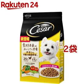 シーザー ドライ 成犬用 チキンと4種の農園野菜入り 超小粒(1.5kg*2袋セット)【m04d】【シーザー(ドッグフード)(Cesar)】