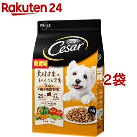 シーザー ドライ 成犬用 ラムと4種の農園野菜入り 小粒(1.5kg*2袋セット)【m04d】【シーザー(ドッグフード)(Cesar)】