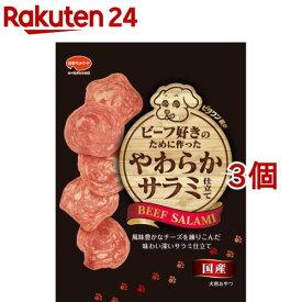 ビタワン君のビーフ好きのために作ったやわらかサラミ仕立て(70g*3個セット)【ビタワン】