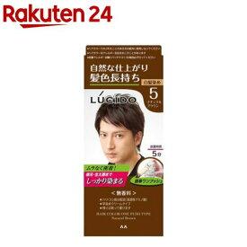 ルシード ワンプッシュケアカラー 5 ナチュラルブラウン(50g+50g)【ルシード(LUCIDO)】[白髪染め]