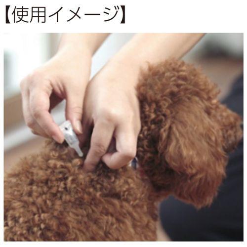 薬用アースサンスポットラベンダー小型犬用