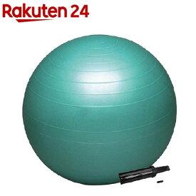バランスボール セイフティー ポンプ付き DB65P(65cm)【ハタ(HATA)】