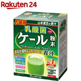 山本漢方 乳酸菌プラスケール粉末(4g*30包)【山本漢方 青汁】