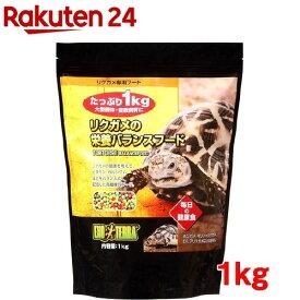エキゾテラ リクガメの栄養バランスフード(1kg)【エキゾテラ】