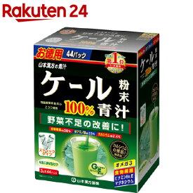 山本漢方ケール粉末100% スティック(3g*44包)【山本漢方 青汁】