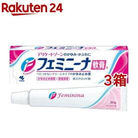 【第2類医薬品】小林製薬 フェミニーナ軟膏S(30g*3コセット)【フェミニーナ】