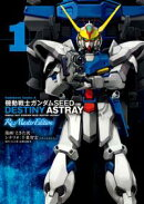 機動戦士ガンダムSEED DESTINY ASTRAY Re: Master Edition(1)