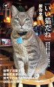 ヤマケイ新書 「いい猫だね」僕が日本と世界で出会った50匹の猫たち【電子書籍】[ 岩合 光昭 ]