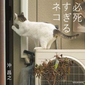 写真集 必死すぎるネコ【電子書籍】[ 沖昌之 ]