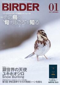 BIRDER2021年1月号【電子書籍】[ BIRDER編集部 ]