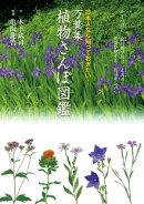 万葉集 植物さんぽ図鑑