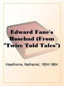"""Edward Fane's Rosebud (From """"Twice Told Tales"""")"""
