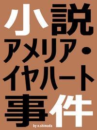 小説アメリア・イヤハート事件