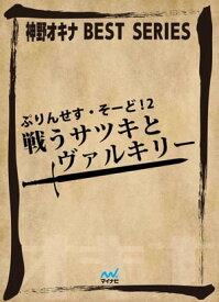 ぷりんせす・そーど! 2 戦うサツキとヴァルキリー【電子書籍】[ 神野オキナ ]