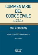 Della Proprietà - artt. 810-868