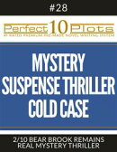 """Perfect 10 Mystery / Suspense / Thriller Cold Case Plots #28-2 """"BEAR BROOK REMAINS – REAL MYSTERY THRILLER"""""""