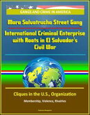 Gangs and Crime in America: Mara Salvatrucha Street Gang: International Criminal Enterprise with Roots in El…