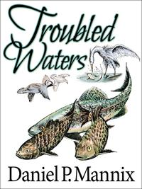 TroubledWaters