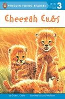 Cheetah Cubs