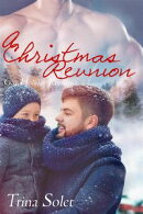 A Christmas Reunion (Gay Romance)