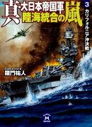 真・大日本帝国軍 陸海統合の嵐 3