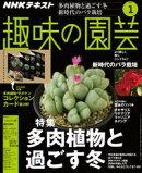 NHK 趣味の園芸 2020年1月号[雑誌]