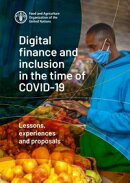 Digital Finance and Inclusion in the Time of Covid-19: Lessons, Experiences and Proposals